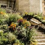 Girona - temp de flors